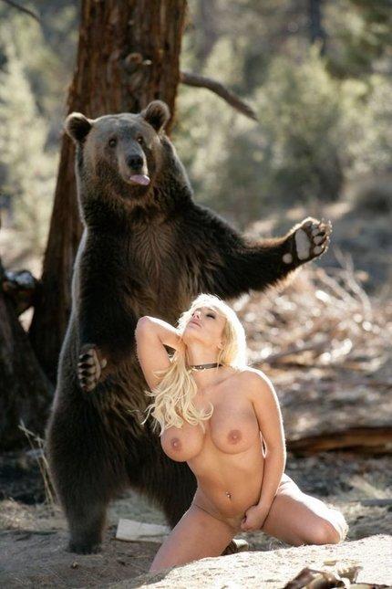 Голый медведь фото